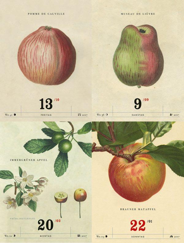 Apfelkalender_2
